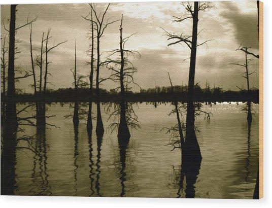Black Bayou 8 Wood Print