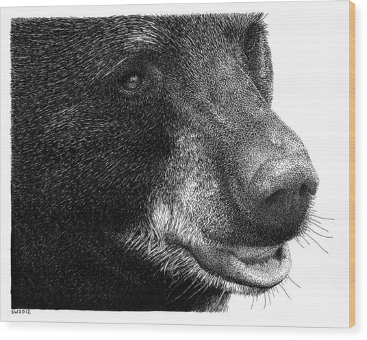Black Bear Wood Print