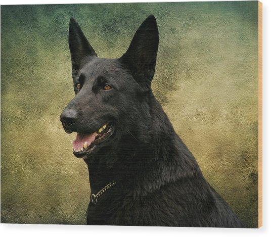Black German Shepherd Dog IIi Wood Print
