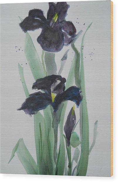 Black Iris Wood Print