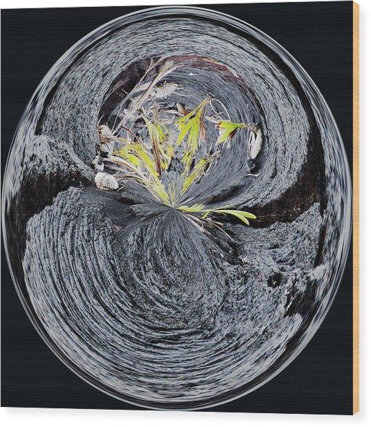 Black Lava Sands Wood Print