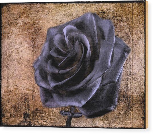 Black Rose Eternal   Wood Print