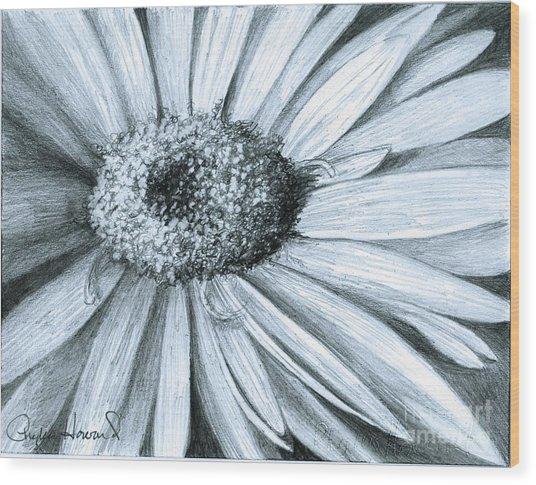 Black White Gerber Wood Print