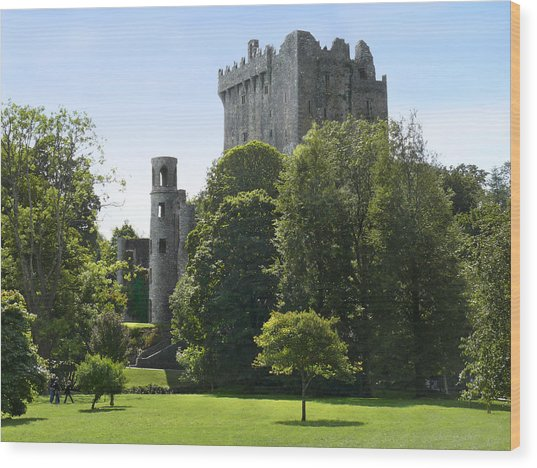 Blarney Castle - Ireland Wood Print
