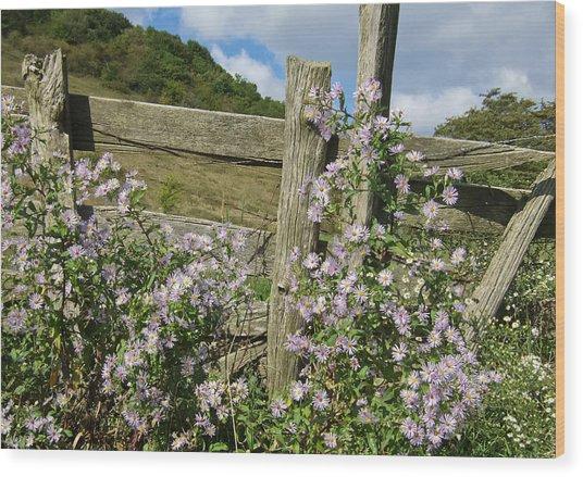 Blooming Season Wood Print by Victoria Ashley