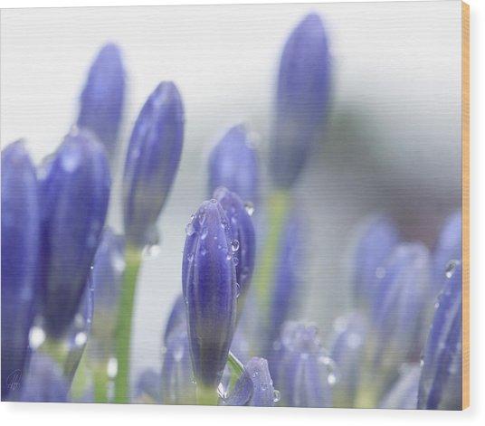 Blue Buds Wood Print