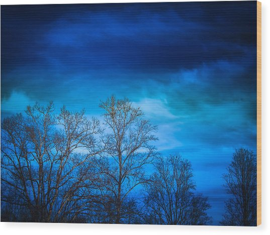 Blue Delight Wood Print by Victoria Ashley