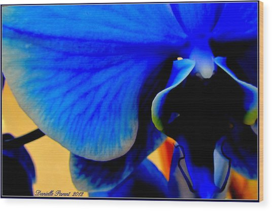 Blue Diamonds Orchids Wood Print
