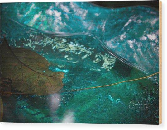 Blue Glass Bird Bath Wood Print