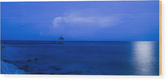 Blue Wood Print by Guillermo Luengas