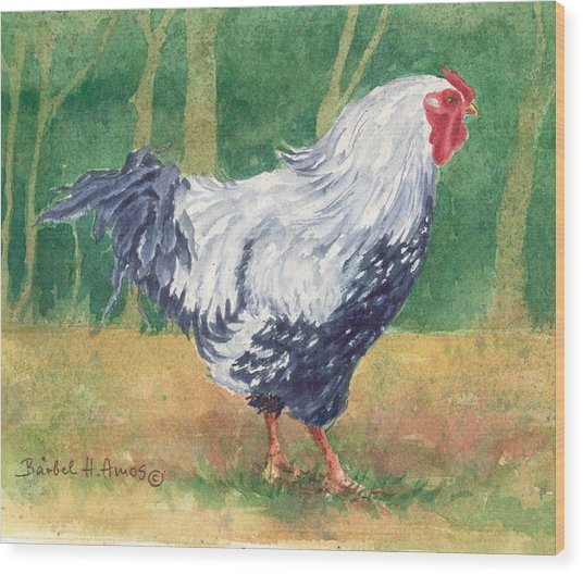 Blue Hen  Wood Print