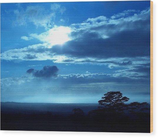 Blue Lights Wood Print by Nadi Leonard