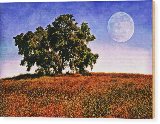 Blue Moon Morning Wood Print by Donna Pagakis