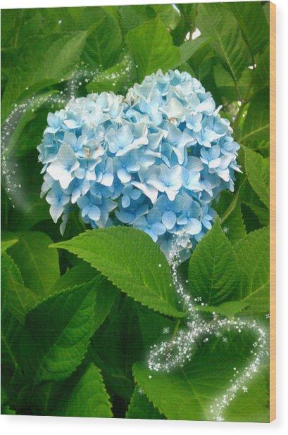 Blue Pom Flower Wood Print by Lee Yang