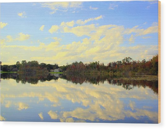 Blue Reflections Wood Print