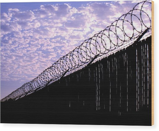 Blue Sunset And Barbed Wire Wood Print