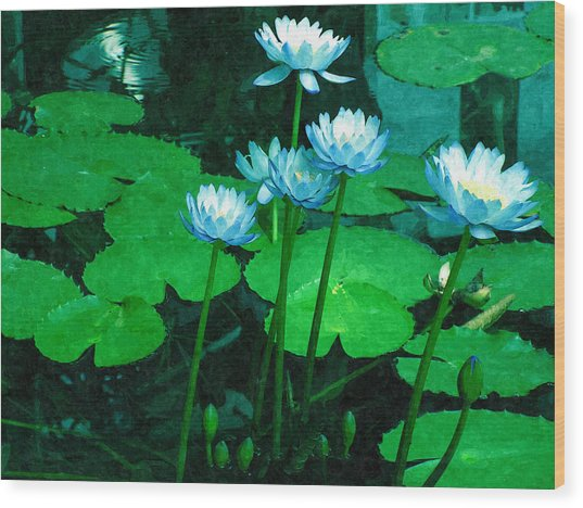 Blue Water Lily Wood Print by Design Windmill