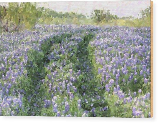 Bluebonnet Trail Wood Print
