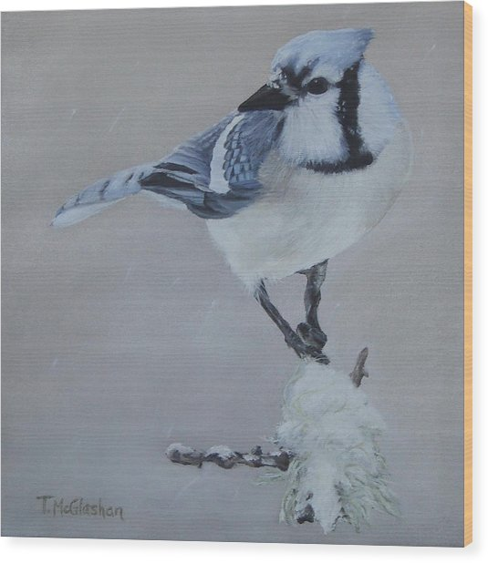 Bluejay In Winter Wood Print by Traci McGlashan