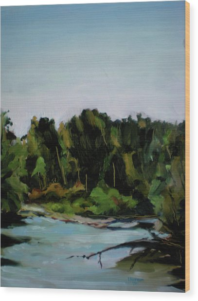 Boise River From Greenbelt Wood Print