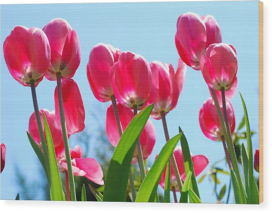 Bouquet Of Tulips Wood Print