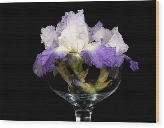 Bowl Of Iris Wood Print by Trudy Wilkerson