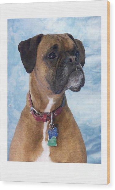 Boxer 950 Wood Print by Larry Matthews