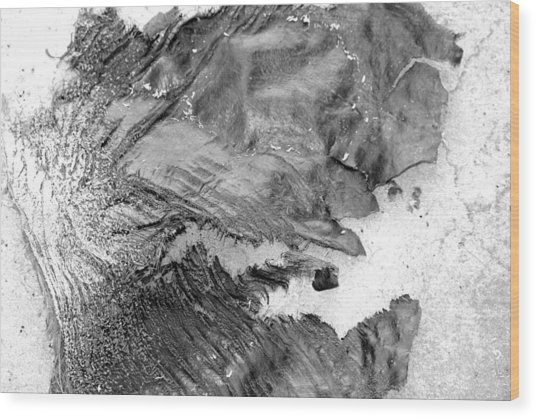 Breakaway Wood Print