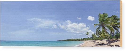 Breathtaking Tropical Beach Panorama Wood Print