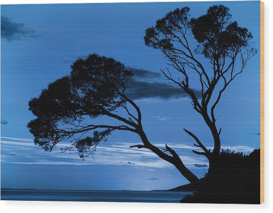 Brela Blue Version Wood Print