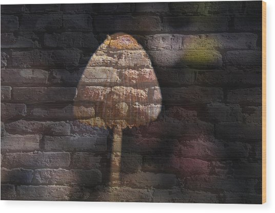 Brick Mushroom Wood Print