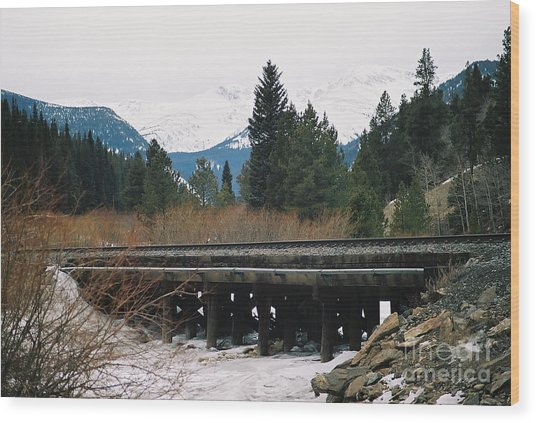 Bridge The Gap Wood Print by Christopher Griffin