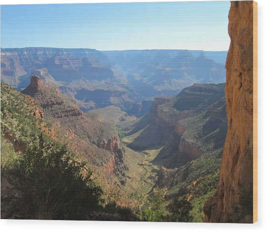 Bright Angel Trail Wood Print by Pasha Sourbeer