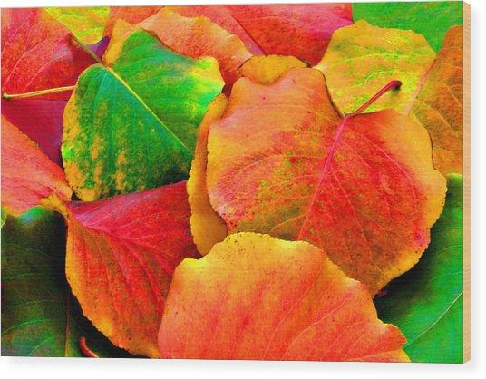Bright Beautiful Fall Leaves Wood Print