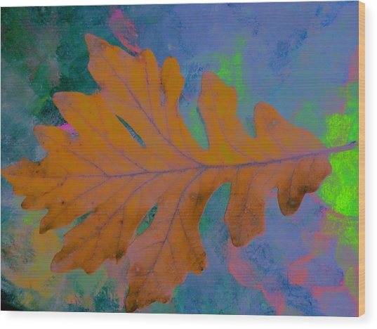 Bright Oak Wood Print by Beth Akerman