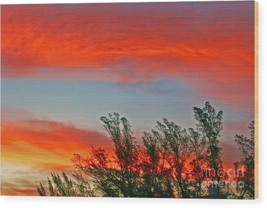 Brilliant Sunrise Wood Print