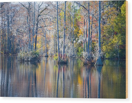 Brock Millpond 5 Wood Print