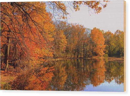 Brooks Pond   Wood Print
