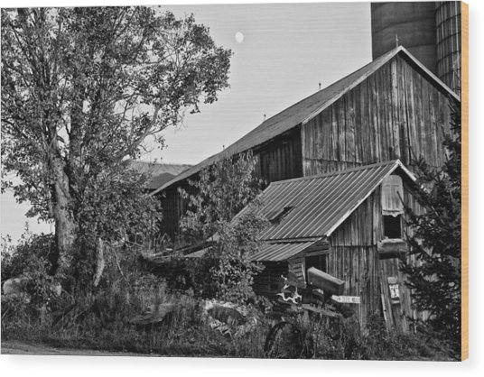 Brownies Barn  Wood Print