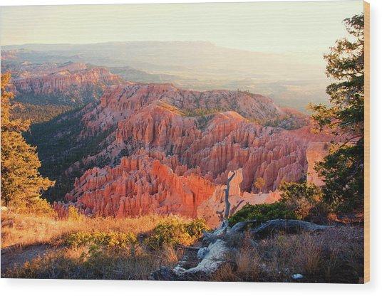 Bryce Canyon At Sunrise Wood Print