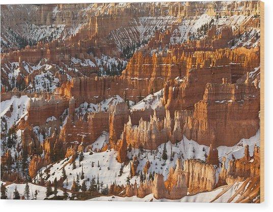 Bryce Canyon Morning Light  Wood Print