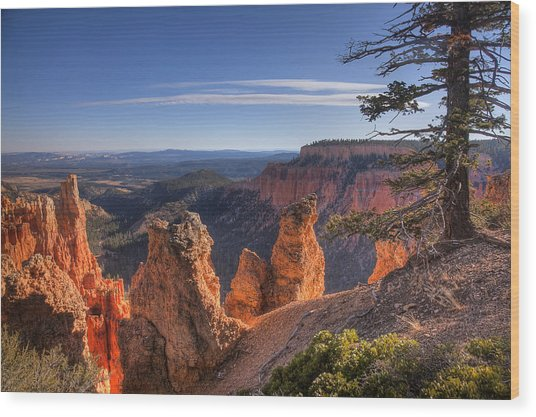 Bryce Sunrise Wood Print