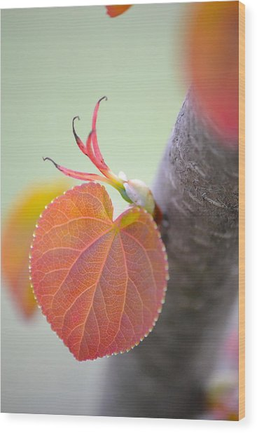 Budding Heart Wood Print