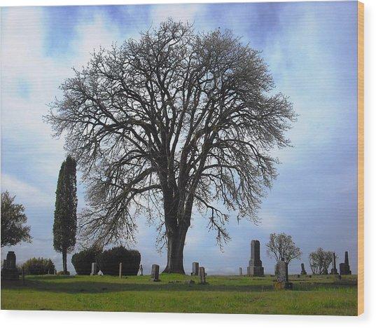 Buena Vista Cemetery Port Gamble Wood Print