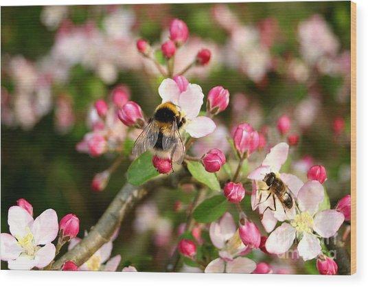 Bumble Blossom Wood Print