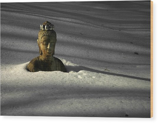 Buried Buddha Wood Print by Christine Gauthier