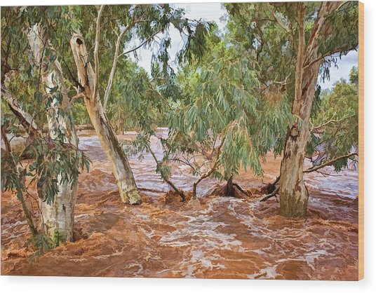 Bush Flood Wood Print