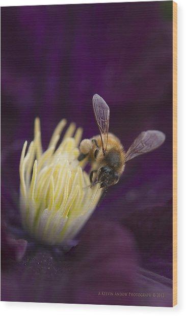 Busy Bee Wood Print by Kelvin Andow