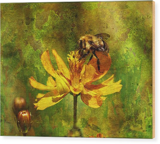 Busy Busy Honey Bee Wood Print