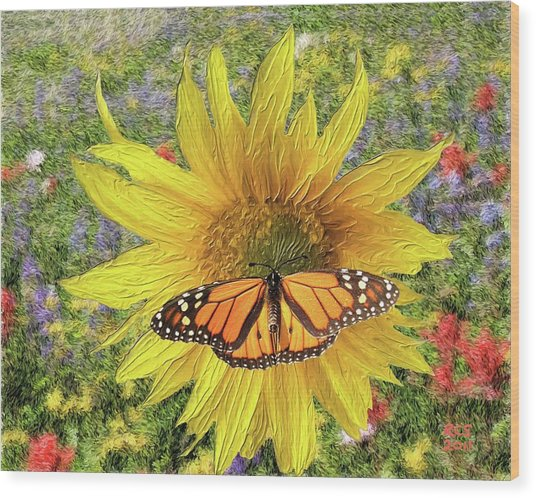 Butterfly And Sunflower Wood Print